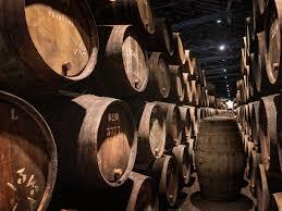 Fermentation malolactique (FJM) viticulture oenologie formation sante