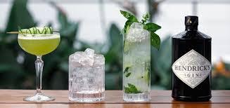 hendricks - hendrix gin - avis